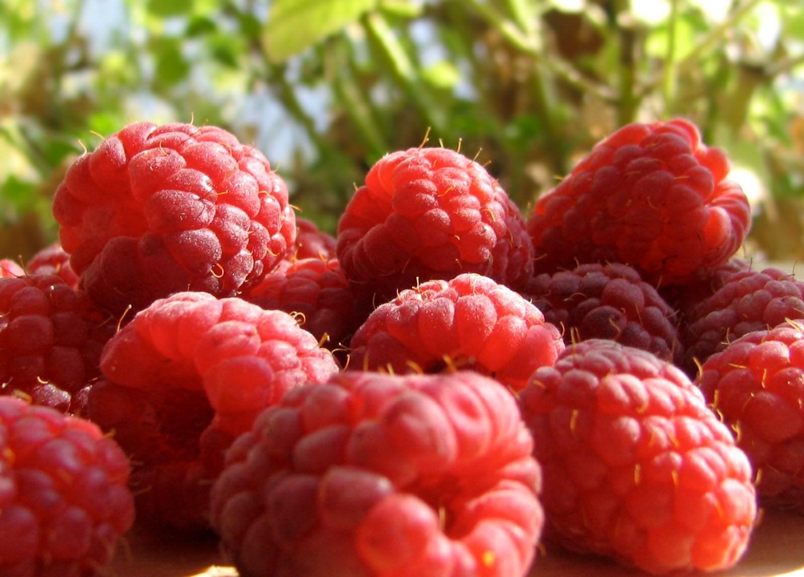 raspberry-a